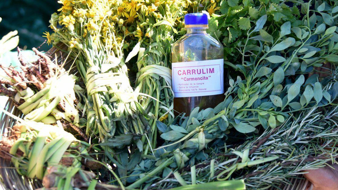 Carrulim: Caña, ruda y limón, para renovar la sangre