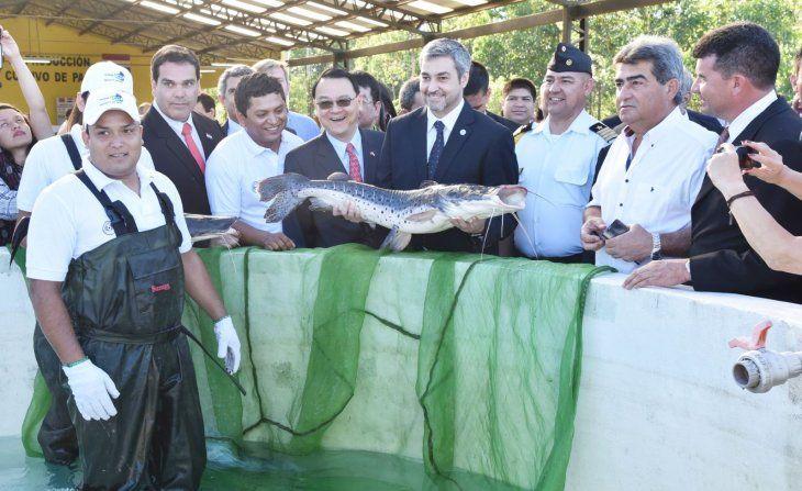 Producción. El presidente  recorrió el laboratorio de producción de alevines y cultivo de pacú que está en  Eusebio  Ayala.