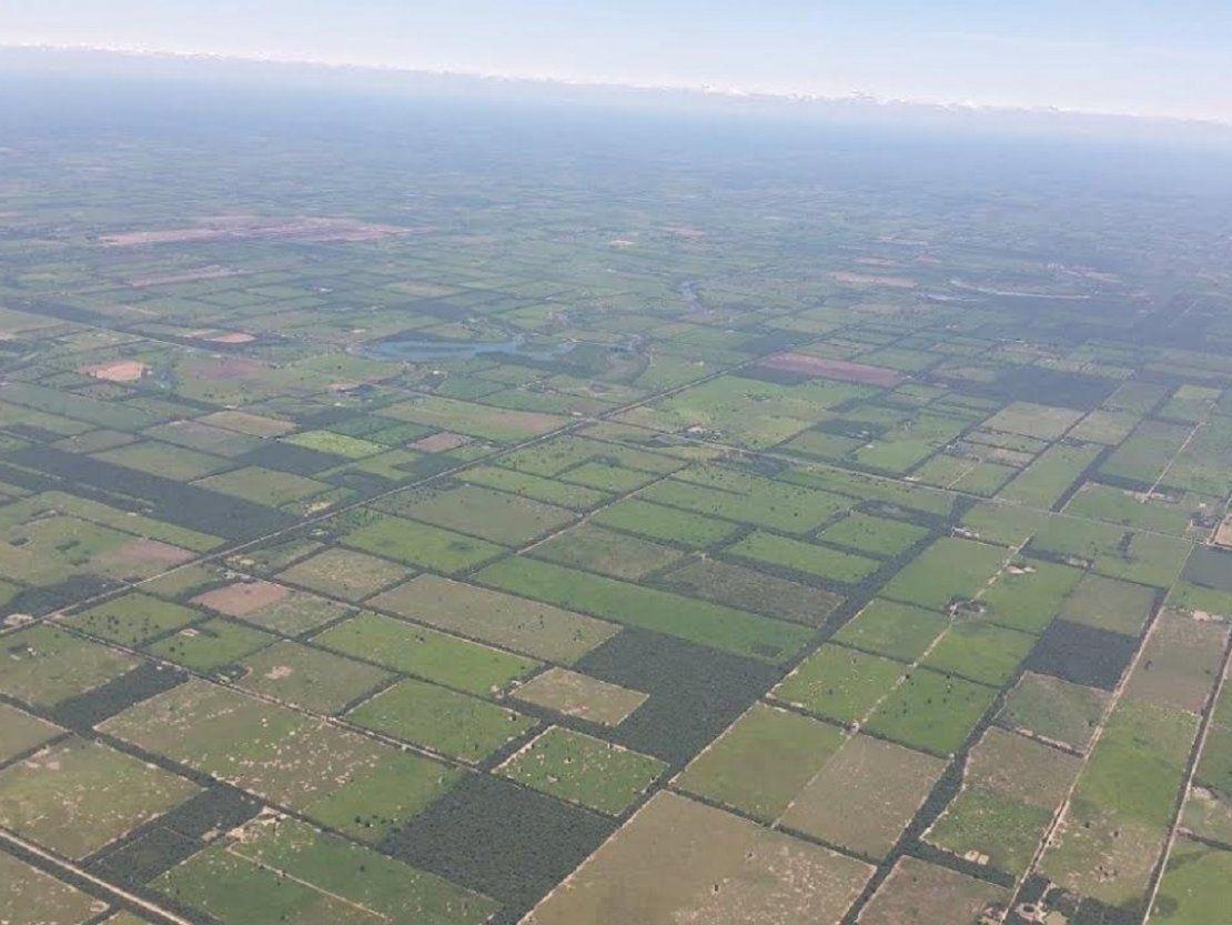 Paraguay controlará deforestación con imágenes de satélite en tiempo real