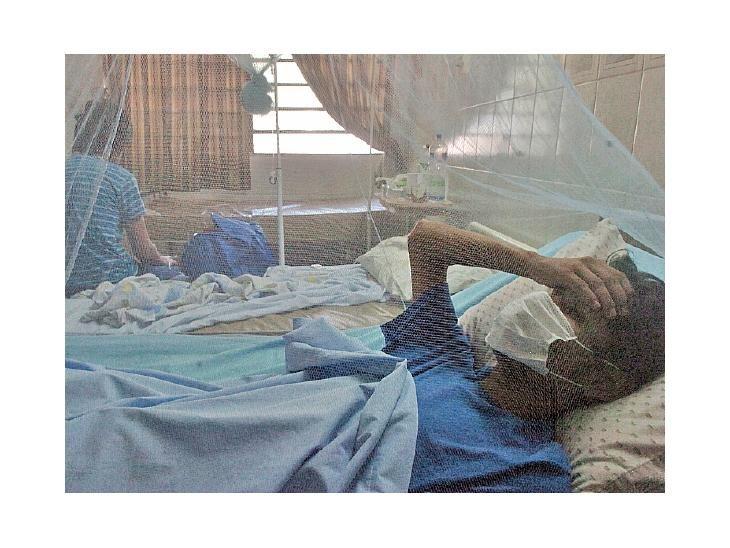 Alerta. Mientras se estudia un supuesto caso fatal asociado al dengue