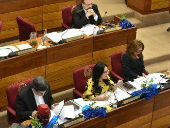 El proyecto que declara provida y profamilia a la Cámara de Senadores fue aprobado este jueves.