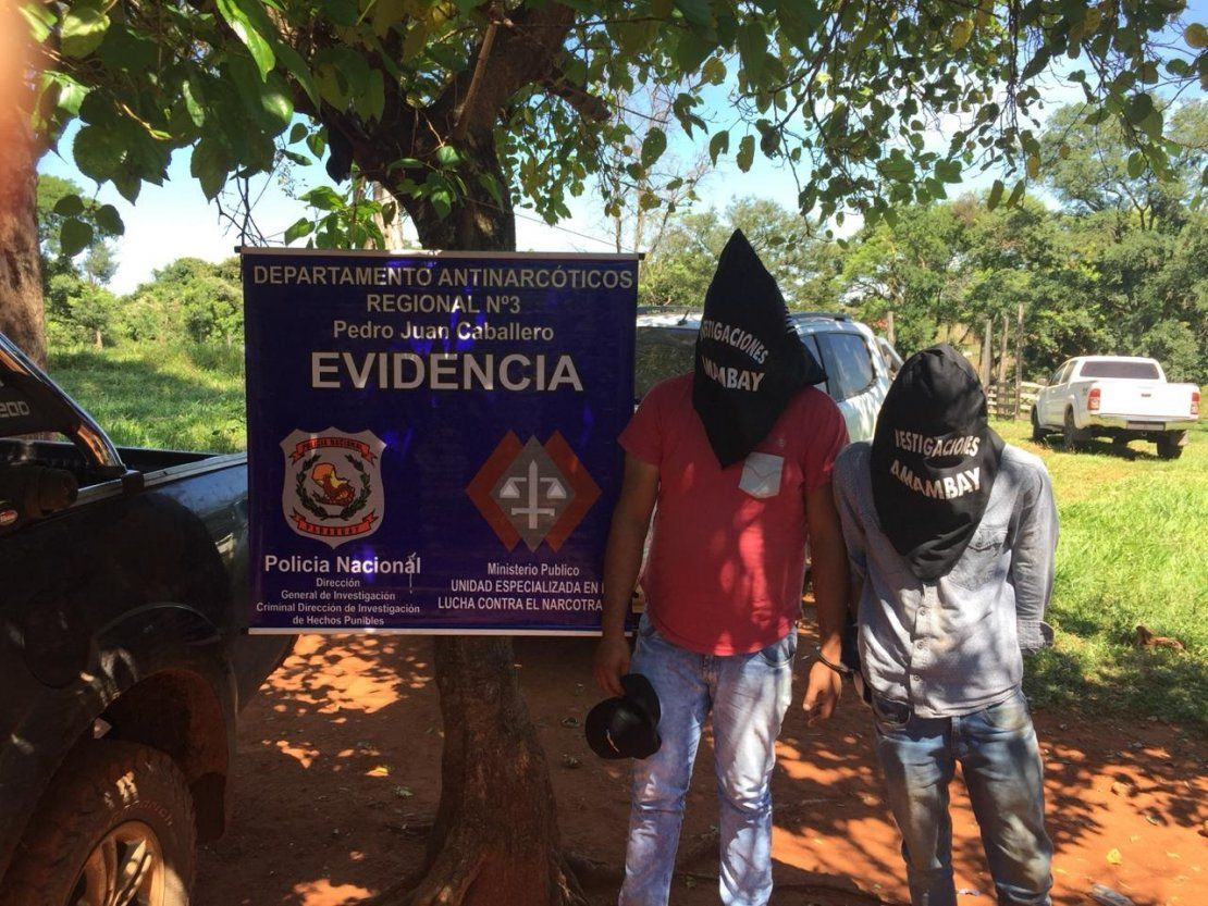 Detienen a dos hombres con 3.600 kilos de marihuana en Amambay