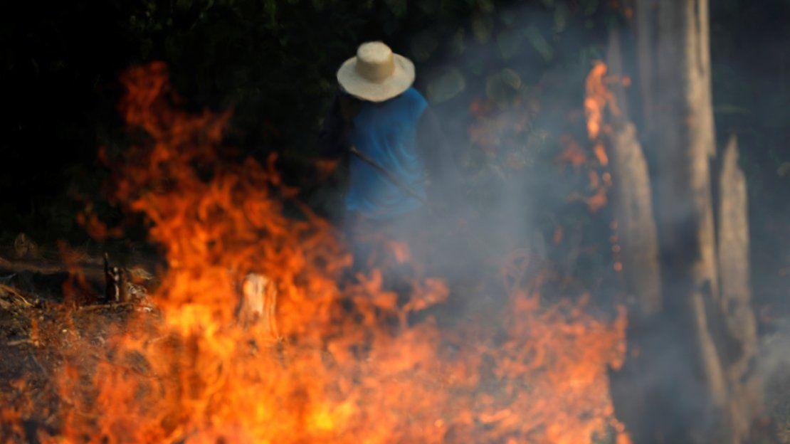 Amazonía: El pulmón del mundo agoniza con los incendios forestales