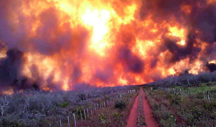Infernal. Grandes  frentes de fuego  ingresaron desde Bolivia  a gran velocidad en la  Asociación Agropecuaria de Agua Dulce.