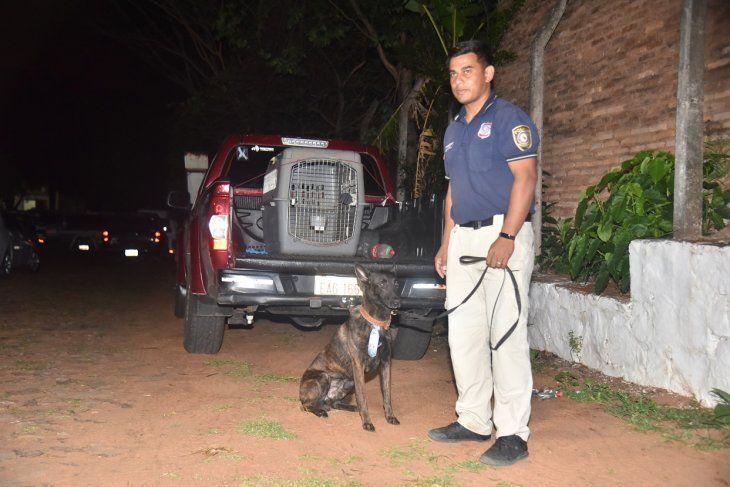 Un can antidroga detectó las sutancias en el automóvil.