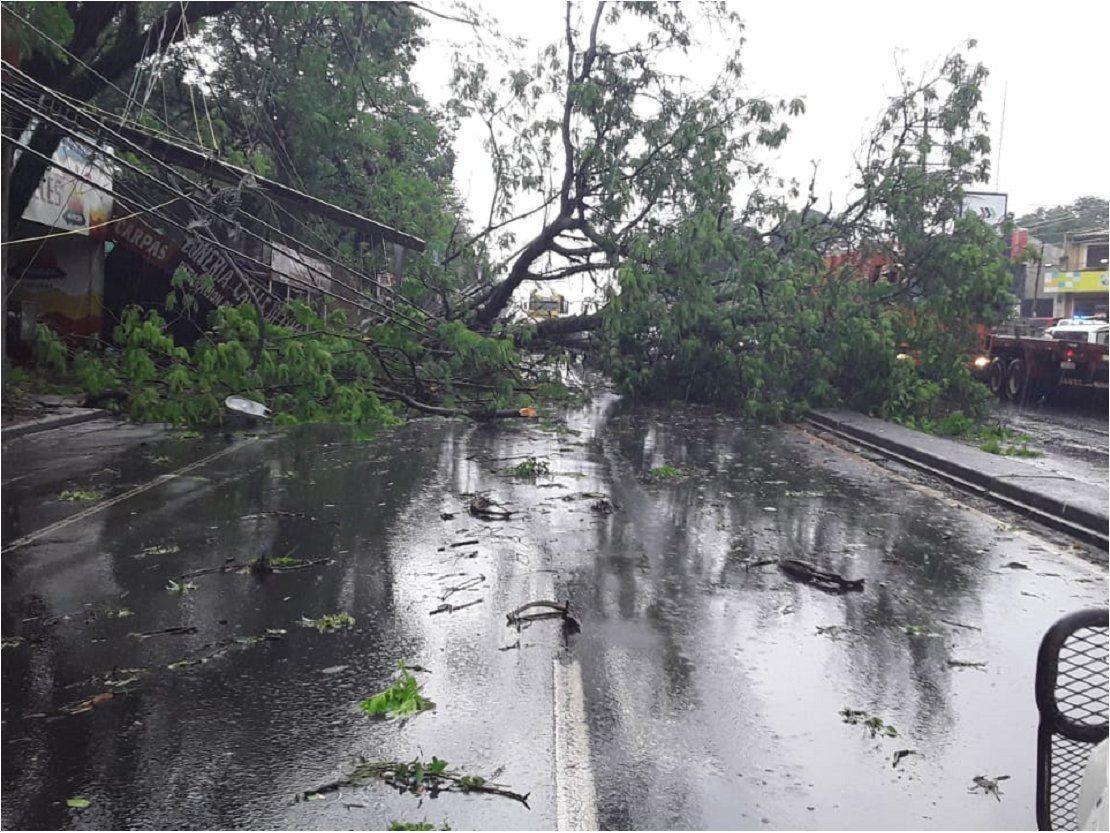 Vientos superaron 100 km/h en Ñemby y Villa Elisa - ÚltimaHora.com