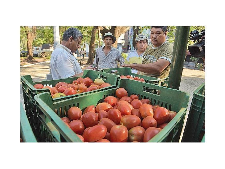 Importación. Se restringe  el ingreso de tomate argentino.