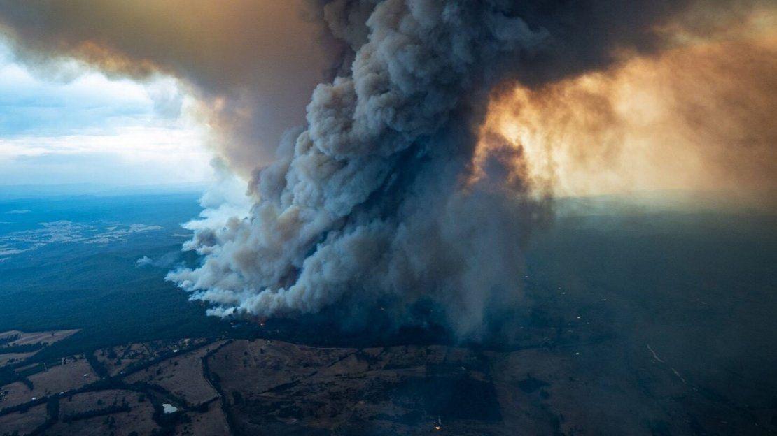 Incendios en Australia siguen sumando catastróficas consecuencias