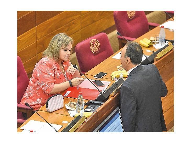 Debate. Samaniego planteó cambios en ley de Cancillería.