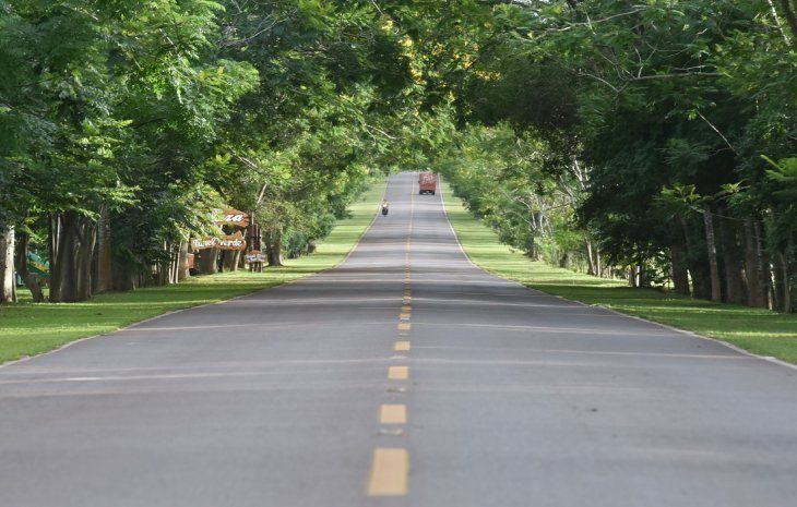 Túnel verde. La entrada al pueblo por el ramal que lo une a Itacurubí de la Cordillera tiene un túnel de frondosos árboles.