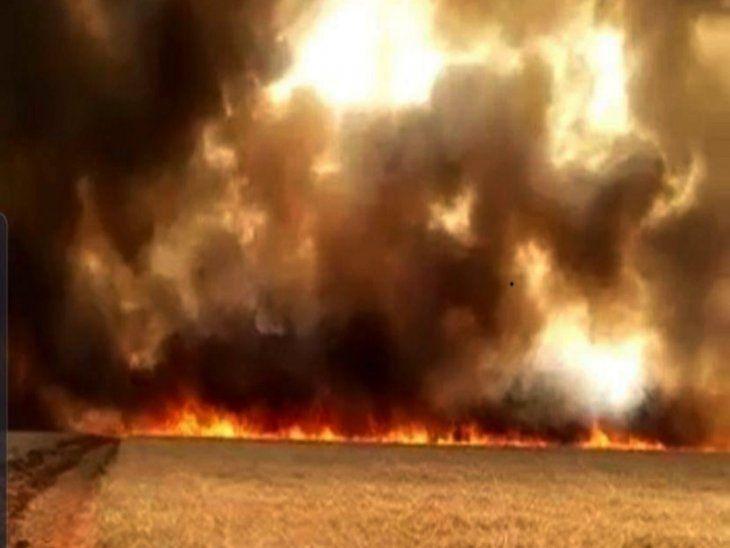 La Cámara de Diputados aprobó la creación de un comando interinstitucional para afrontar la situación de emergencia.