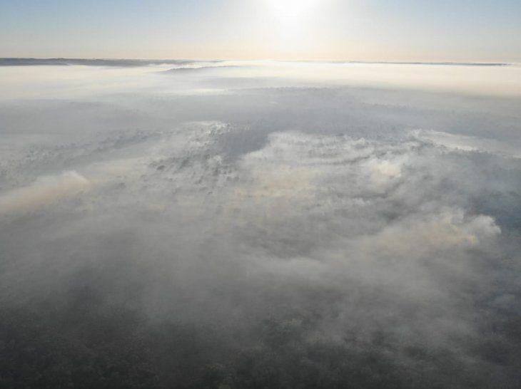 Desde la organización Guyra Paraguay piden declara emergencia nacional de la Reserva de Bosque Atlántico, San Rafael.
