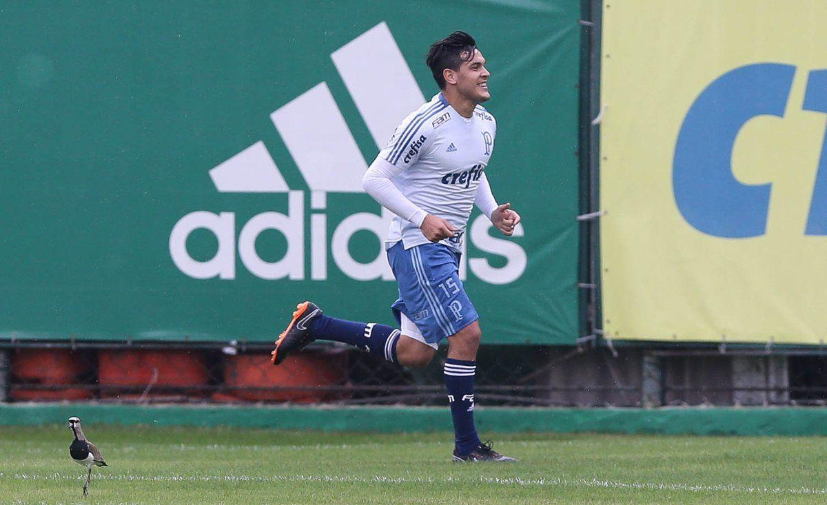Gustavo Gómez ya se ejercita con el Palmeiras. Foto: Gentileza @Palmeiras