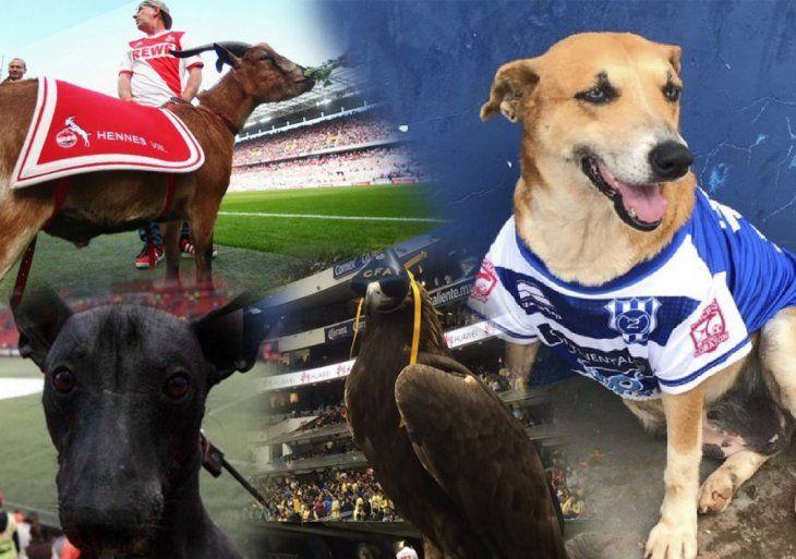 Mascotas célebres del fútbol.