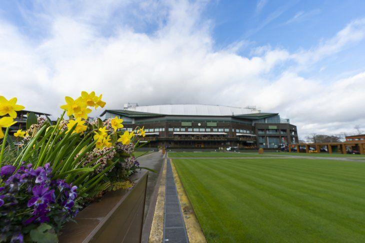 Wimbledon analiza los posibles escenario como consecuencia de la Pandemia.