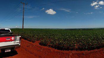 ONU concluye que fumigación de tierras con fines agrícolas en Paraguay violó los derechos de los guaraníes.