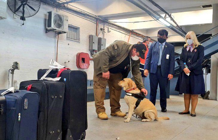 Se inició una investigación acerca de un supuesto esquema de funcionarios del aeropuerto que estarían valiéndose de sus funciones para introducir drogas en maletas