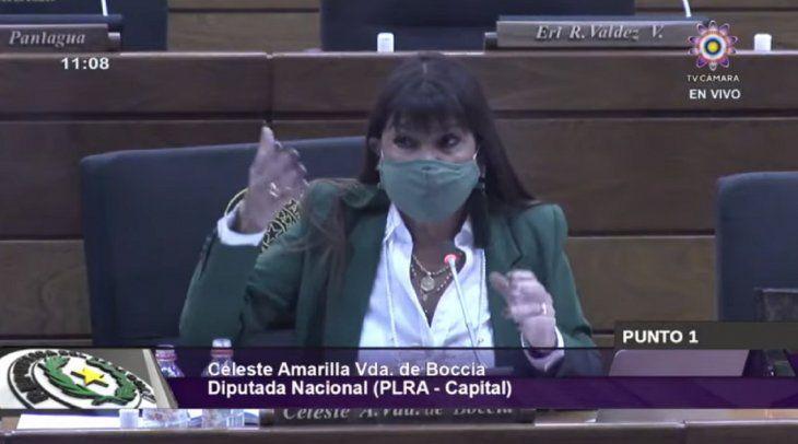 El pleno decidió invalidar el voto de Celeste Amarilla en referencia al arroyo Tobatí.