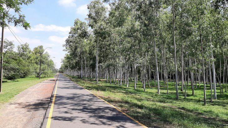 En Asunción se pronostica un clima caluroso y húmedo