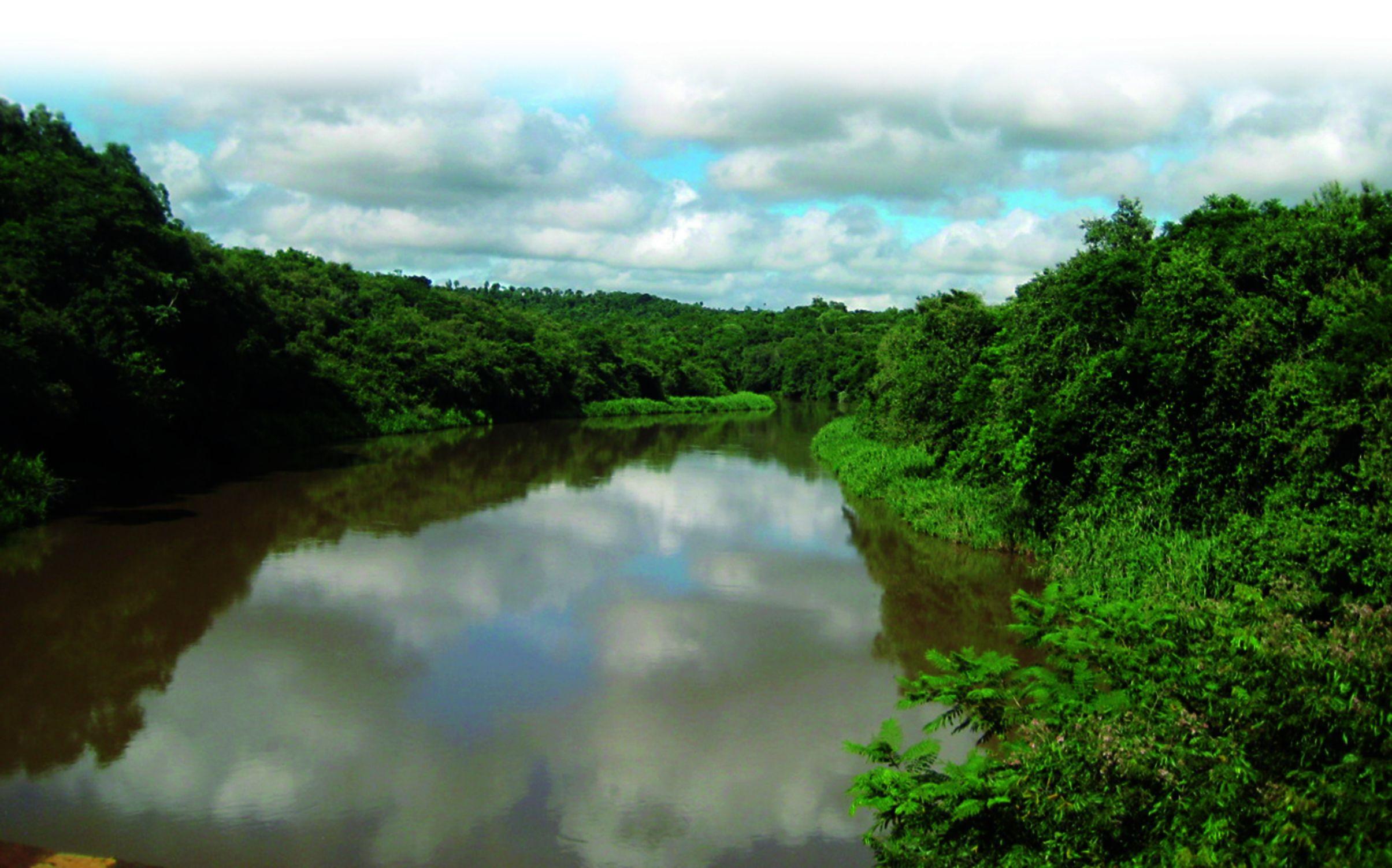 Reserva natural. Un total de 4.832 hectáreas, entre La Paloma, Salto del Guairá y Puerto Adela, de Canindeyú, ocupa este paradisiaco espacio, donde conviven especies en peligro de extinción.